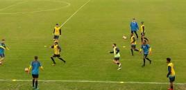 Pelotas faz jogo-treino contra Grêmio Sub-19
