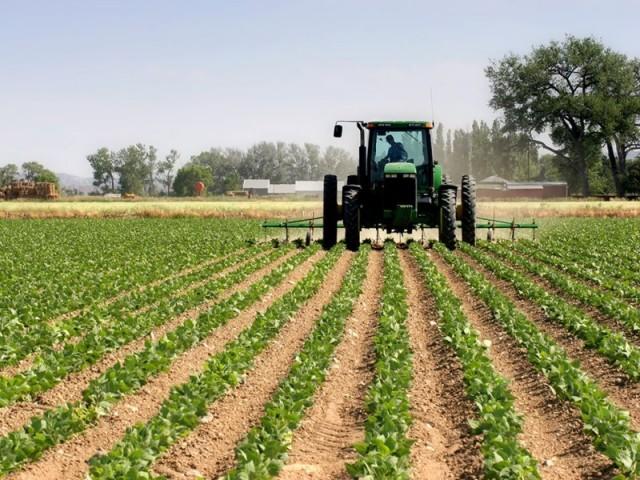Faturamento da agropecuária brasileira atinge recorde de R$ 630 bilhões